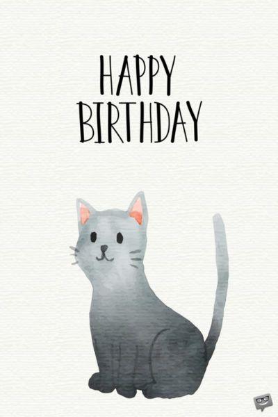 Tarjeta de gato felicidades